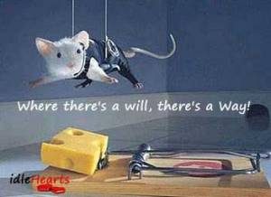 Quote - Where there is a will, there is a way.